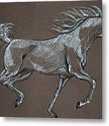 Arabian Horse  Metal Print by Angel  Tarantella