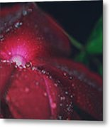 A Beacon Of Light Metal Print by Laurie Search