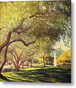 A Day For Dreaming Metal Print by Laurie Search