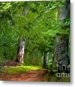 A Day In The Forest Metal Print by Lutz Baar