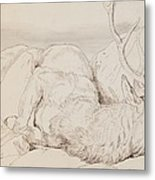 A Dead Stag Metal Print by Sir Edwin Landseer