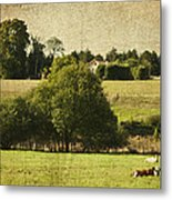 A French Country Scene Metal Print by Georgia Fowler