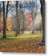 A November Morning Metal Print by Bill Wakeley