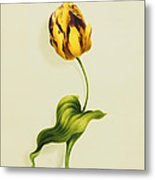 A Parrot Tulip Metal Print by James Holland