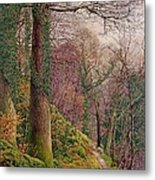 A Path In The Wood Metal Print by Edward Bentley