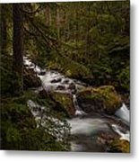 A River Passes Through Metal Print by Mike Reid