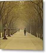 A Royal Stroll Metal Print by Aaron S Bedell