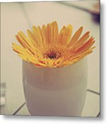 A Simple Thing Metal Print by Laurie Search