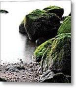 A Study In Green Metal Print by JC Findley