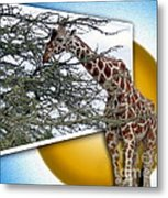 A Taste From The Other Side Metal Print by Sue Melvin