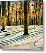 A Touch Of Autumn Metal Print by Darren Fisher