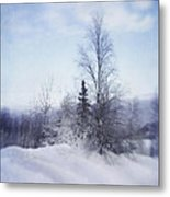 A Tree In The Cold Metal Print by Priska Wettstein