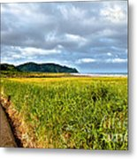 A View From Discovery Trail Metal Print by Robert Bales
