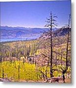 A View From Okanagan Mountain Metal Print by Tara Turner