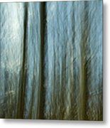 A Walk In The Woods IIi Metal Print by Bob Retnauer