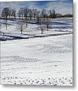 A Winters Day Metal Print by Bill Wakeley