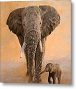 African Elephants Metal Print by David Stribbling