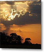 After The Storm Metal Print by Francie Davis