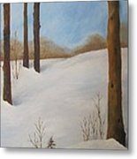 After The Storm Metal Print by Nancy Craig