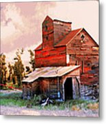 Against The Grain Metal Print by Marty Koch