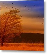 Against The Wind Metal Print by Holly Kempe