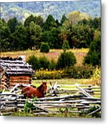 Along The Wilderness Trail Metal Print by Karen Wiles