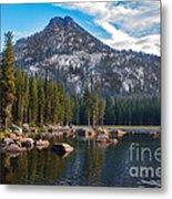 Alpine Beauty Metal Print by Robert Bales