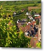 Alsace Morning Metal Print by Brian Jannsen