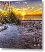 Ambience Of The Gulf Metal Print by Marvin Spates