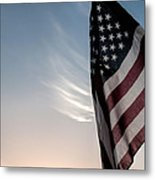 America Metal Print by Peter Tellone