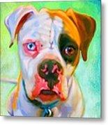 American Bulldog Art Metal Print by Iain McDonald