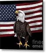 American Eagle Metal Print by Karen Sheltrown