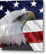 American Flag And Bald Eagle Metal Print by Jill Lang