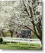Amish Buggy Fowering Tree Metal Print by David Arment