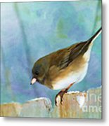 And Down I Go Metal Print by Betty LaRue