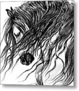 Andalusian Arabian Head Metal Print by Cheryl Poland
