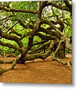 Angel Oak Tree Branches Metal Print by Louis Dallara