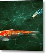 Animal - Fish - Koi - Another Fish Story Metal Print by Mike Savad