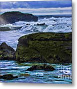 Ano Nuevo Seagull Metal Print by Blake Richards