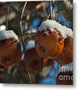 Apple Sorbet Metal Print by The Stone Age