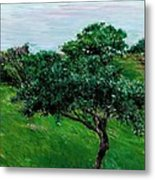 Apple Trees By The Sea Trouville Metal Print by Gustave Caillebotte