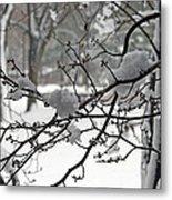 April Snow Metal Print by Kay Novy