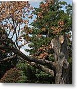 Arlington National Cemetery - 121242 Metal Print by DC Photographer