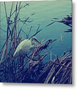 As The Light Fades Metal Print by Laurie Search