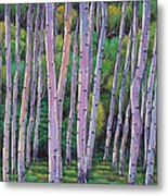 Aspen Enclave Metal Print by Johnathan Harris