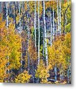 Aspen Tree Magic Cottonwood Pass Metal Print by James BO  Insogna