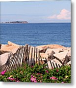 At The Beach Metal Print by Janice Drew