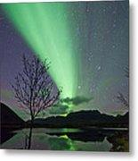 Auroras And Tree Metal Print by Frank Olsen