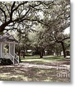 Austin Texas Southern Garden - Luther Fine Art Metal Print by Luther  Fine  Art