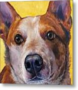 Australian Cattle Dog Red Heeler On Yellow Metal Print by Dottie Dracos